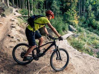 Vtt Dans La Foret Homme Sur Le Vélo